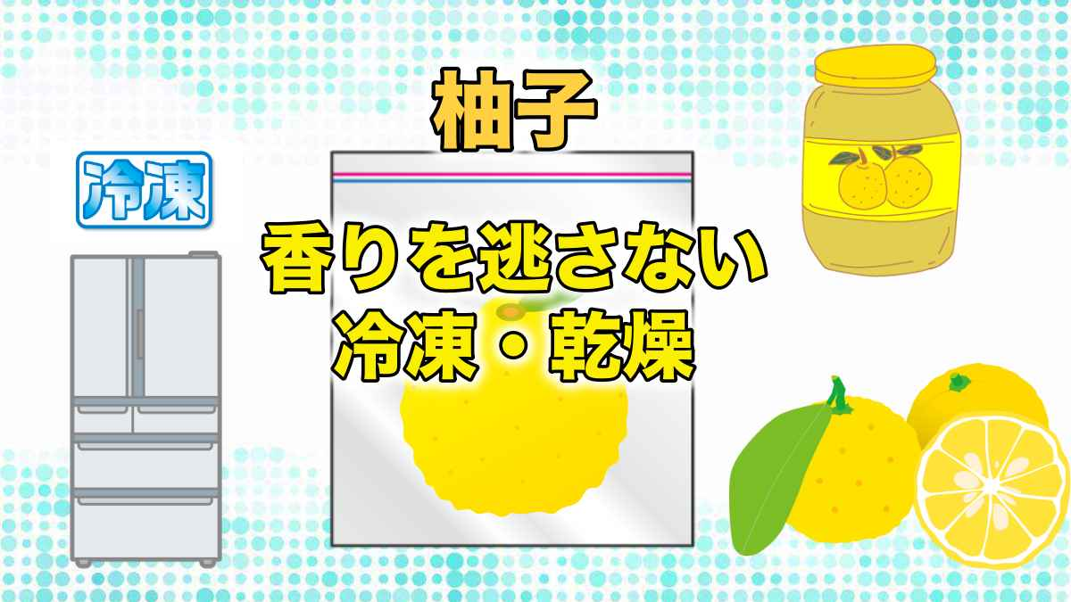 柚子の香りを逃さない冷凍乾燥保存