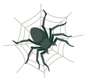 蜘蛛 ゴキ ジェット