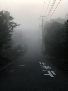 霧で視界の悪い道路